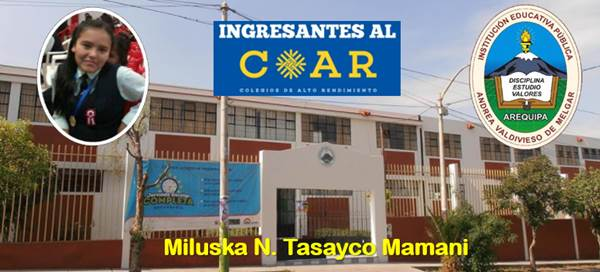Miluska Tasayco Mamani COAR 2018