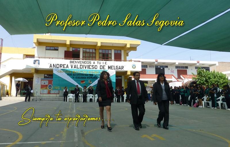 Profesor Pedro Salas Segovia
